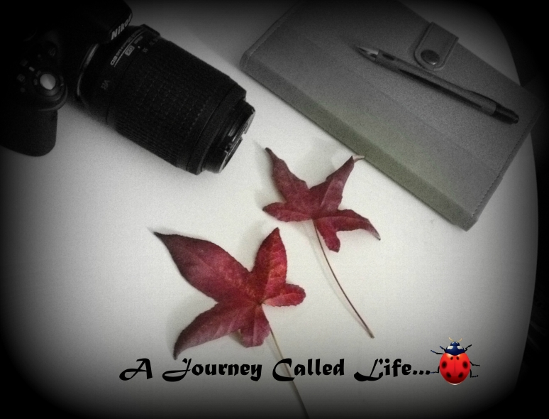 A Journey Called Life (2)