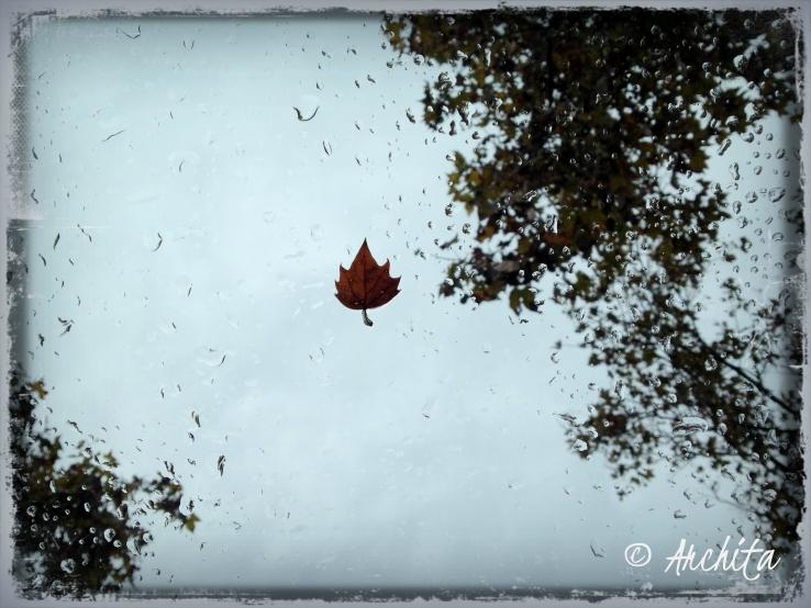 fall14