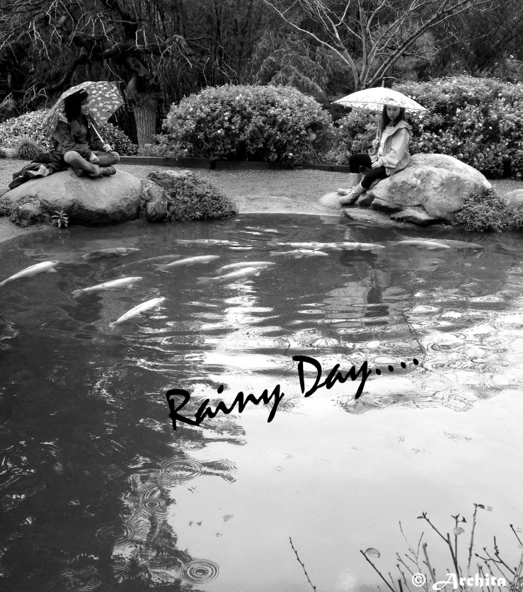Black and White Photography:Rainy Day