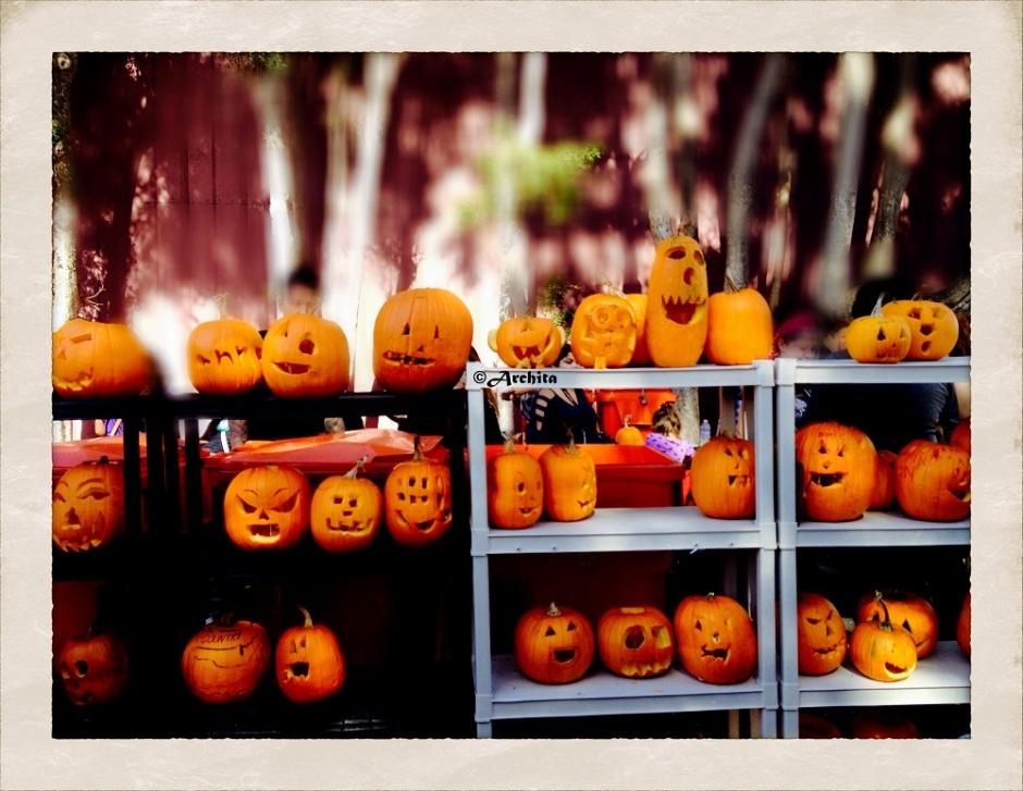 winky pumpkin